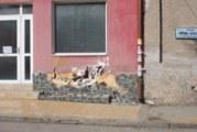 Джигит проби депутатска къща, събори съседна ограда