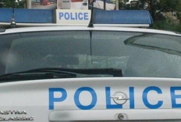 Полицията разследва насилие над животни! Мъж уби с лопата две кученца – пинчер и болонка, гонели кокошките в двора на баща му