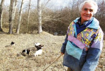 Пенсионери от кюстендилското село Гирчевци произвеждат моцарела, по-хубава от италианската