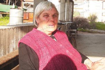 Белополката с един бъбрек баба Ленче: Няма кяр от овцете и козите, храниш ги 3 пъти на ден за 300 грама мляко, внуците не им харесват месото, ромите вече ги мързи дори вълната им да изкупуват и я хвърляме