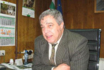 6 добивни и дървопреработвателни фирми в Кюстендилско и Пернишко прекратиха дейност, нямат средства за видеонаблюдение и GPS-и