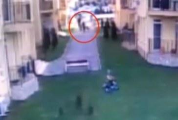 Питбул нахапа жестоко 5-годишно дете (СНИМКИ)