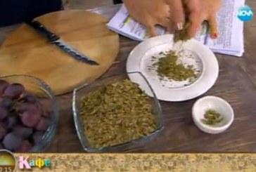 Д-р Папазова: Гроздовите семки могат да предотвратят инсулт и инфаркт