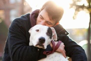 Защо не трябва да гушкаме кучето си