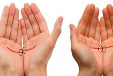 Погледнете дланите си, преценете дали тези линии съвпадат и вижте какво разкрива размерът на ръцете Ви