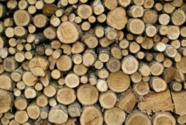 Над 70 кубика крадена строителна дървесина задържаха край Симитли