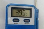 ИСТИНСКИ МОР! В Кулата се пържиха на 40 градуса