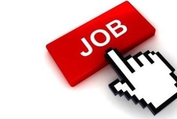 ВАЖНО! Ето къде можете да намерите работа в Пиринско, в Благоевград и Сандански имате най-големи шансове