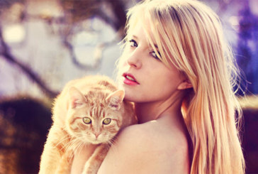Собствениците на котки – първи по изневери