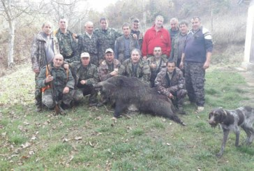 150-кг дива свиня си поделиха след успешен съвместен ловен излет дружинките от Гайтаниново и Ловча