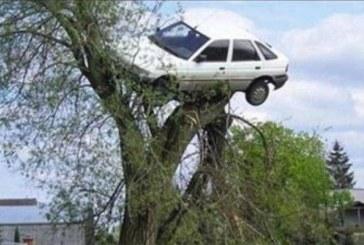 """Кола кацна на дърво, виси в клоните близо до """"Самоковско шосе"""""""