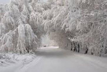 Снегът стигна до Пиринско в Световния ден на снега