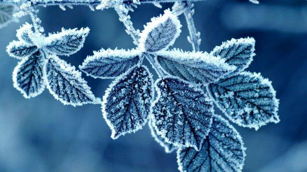 Синоптиците предупреждават! Студ и сняг сковават страната и през февруари, властите предупредени