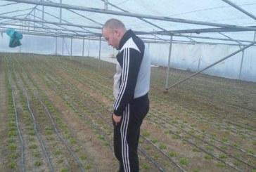Студът удари бизнеса в Сандански! Търговците останаха без стока, зеленчукопроизводителите в патова ситуация