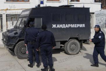 ЮЗДП и жандармерия атакуваха ромската махала в Петрич в акция срещу незаконната сеч