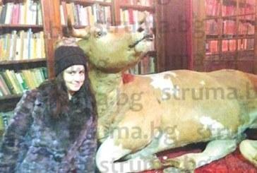 """Благоевградчанка, бивш атакист се снима с крава в """"библиотека"""" в Брюксел"""