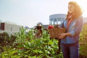 Във Великобритания започнаха да пищят: Няма да можем да функционираме без българските работници
