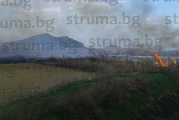 ОТ ПОСЛЕДНИТЕ МИНУТИ! Пожар избухна в Петричко (СНИМКИ)