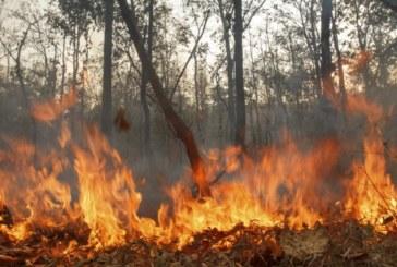 Пожар над Смочево