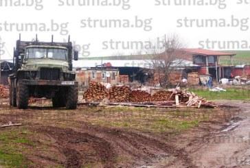 Село скочи срещу незаконен цех за пелети: Не можем да мигнем от шума, наподобяващ картечен откос, с който бизнесменът Р. Ганчев бичи дървесината