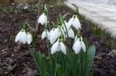 Първият пролетен ден идва със слънце! Температурите скачат до 20 градуса