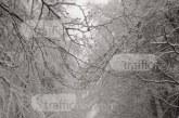 Зимата се завърна! 20-сантиметра сняг натрупа край Пловдив (СНИМКИ)