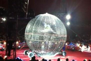 """Инцидент в цирк Балкански! Моторист се преби в """"Глобусът на смъртта"""""""