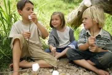Поредността на детето в семейството определя избора му на професия