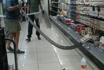 ШОК И УЖАС! Не пожелаваме никому това, което се случи с клиентка на супермаркет (СНИМКИ)