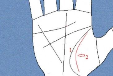 Ето какво ви очаква, ако имате ангелска линия на ръката си