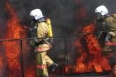 Голям пожар в Петричко! Гори цехът за целулоза и хартия на С. Мантарлиев