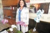 4 орхидеи цъфнаха в кабинета на гл. сестра  на МБАЛ – Благоевград В. Стефанова в  навечерието на Световния ден на здравето