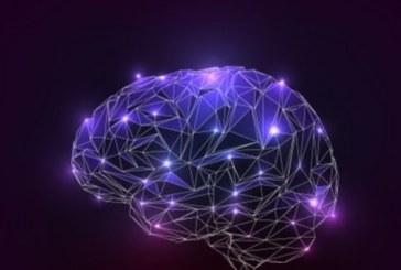Учените със сензационно откритие: Оптимизмът е дефект на човешкия мозък и е вреден