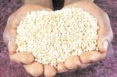 Киноа – вкусна храна при възпалителни заболявания