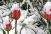 Докога ще вали сняг и какво време ни очаква през уикенда