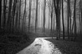 Ще се разтреперите: Зловещата история на Безкрайния път