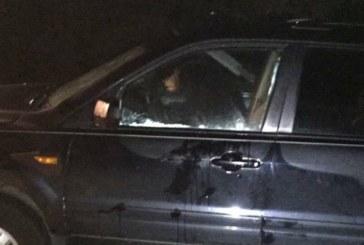 Мечка влезе с взлом в автомобил и се заключи