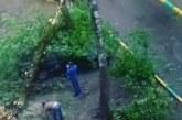 ЕКСКЛУЗИВНО! Адска стихия в Москва! Ураганът уби 6-има, премиерът Медведев е блокиран в резиденцията си (ВИДЕО)