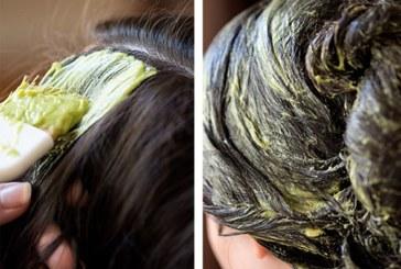 Придайте блясък на косата си с авокадо