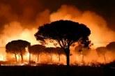 Огромен пожар бушува в Испания, над 1500 души евакуирани