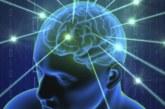 """Недоспалият мозък се """"самоизяжда"""""""