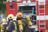 Малко щъркелче, паднало от гнездото му, спасиха петричките пожарникари в село Кулата, за 5 часа гасиха 3 пожара