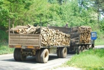 Осуетиха опит за измама при транспортиране на дървесина в района на ДГС – Дупница
