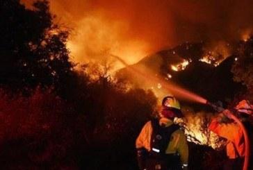250 души се борят с големия пожар в Стара Кресна