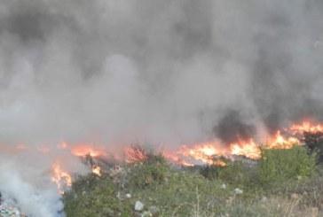 ОТ ПОСЛЕДНИТЕ МИНУТИ! Пожар край Дупница, пушеците се стелят по шосето