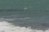Кошмар разтърси Слънчев бряг! Намериха тялото на 11-годишното дете
