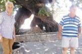 """За първи път """"затапиха"""" чешмата под вековния  чинар на площада в Джигурово, търговци пълнят цистерни с вода, продават я по 1.20 лв./литър"""