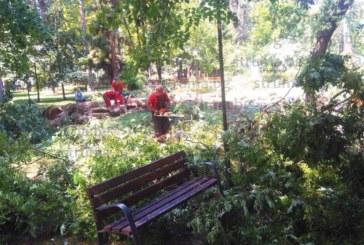 Ето какво остана от опустошителната буря в Гоце Делчев! (СНИМКИ)