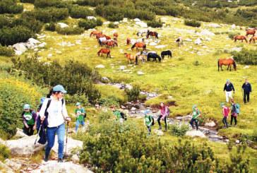 Млади планинари от Г. Делчев изкачиха Безименния връх в Пирин