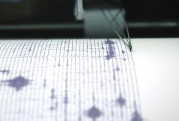 Земетресение удари Стражица